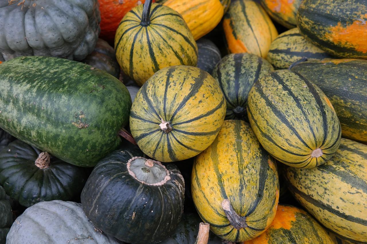 pumpkins-228505_1280